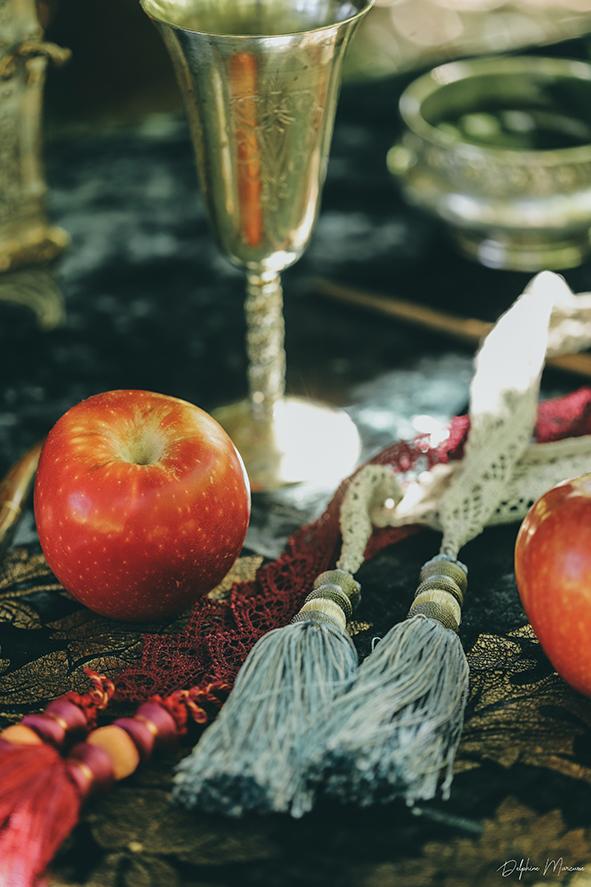 Handfasting mariage celte